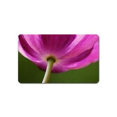 Poppy Magnet (Name Card)