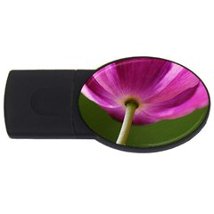 Poppy 1GB USB Flash Drive (Oval)