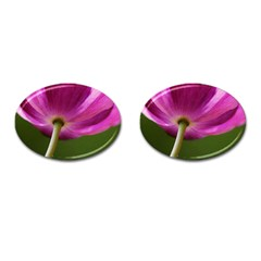 Poppy Cufflinks (Oval)