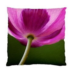 Poppy Cushion Case (Single Sided)