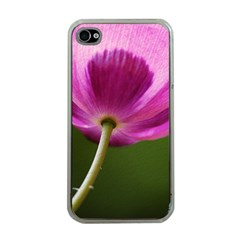 Poppy Apple Iphone 4 Case (clear)