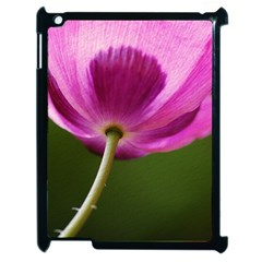 Poppy Apple Ipad 2 Case (black)