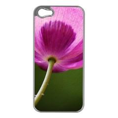 Poppy Apple iPhone 5 Case (Silver)