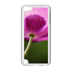 Poppy Apple Ipod Touch 5 Case (white)