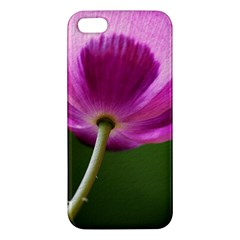 Poppy iPhone 5 Premium Hardshell Case