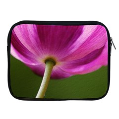 Poppy Apple iPad 2/3/4 Zipper Case