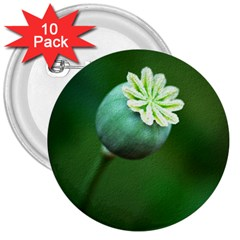 Poppy Capsules 3  Button (10 pack)