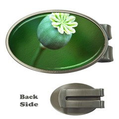 Poppy Capsules Money Clip (Oval)