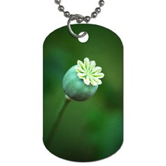 Poppy Capsules Dog Tag (Two-sided)
