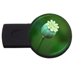 Poppy Capsules 4gb Usb Flash Drive (round)