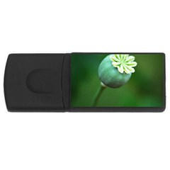 Poppy Capsules 4GB USB Flash Drive (Rectangle)