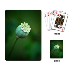 Poppy Capsules Playing Cards Single Design
