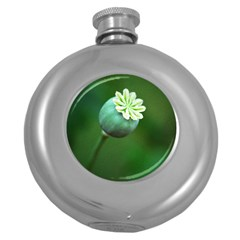 Poppy Capsules Hip Flask (round)