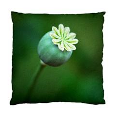 Poppy Capsules Cushion Case (Single Sided)