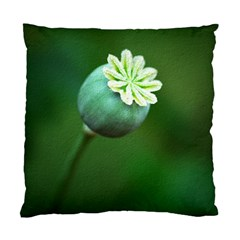 Poppy Capsules Cushion Case (Two Sided)