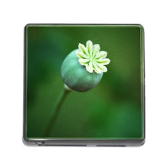 Poppy Capsules Memory Card Reader with Storage (Square)
