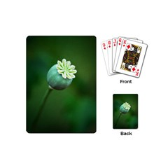 Poppy Capsules Playing Cards (Mini)