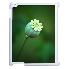 Poppy Capsules Apple iPad 2 Case (White)
