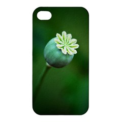 Poppy Capsules Apple Iphone 4/4s Hardshell Case