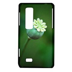 Poppy Capsules LG Optimus 3D P920 / Thrill 4G P925 Hardshell Case
