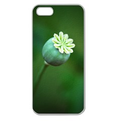 Poppy Capsules Apple Seamless iPhone 5 Case (Clear)