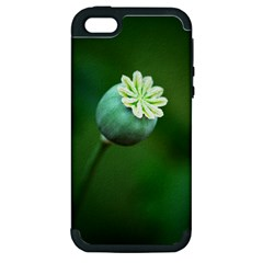 Poppy Capsules Apple iPhone 5 Hardshell Case (PC+Silicone)