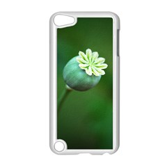 Poppy Capsules Apple iPod Touch 5 Case (White)