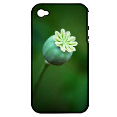 Poppy Capsules Apple iPhone 4/4S Hardshell Case (PC+Silicone)
