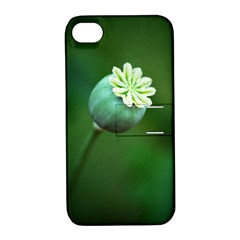 Poppy Capsules Apple iPhone 4/4S Hardshell Case with Stand