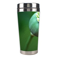 Poppy Capsules Stainless Steel Travel Tumbler
