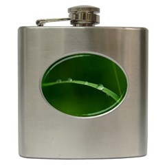Pearls   Hip Flask