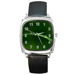 Pearls   Square Leather Watch