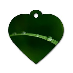 Pearls   Dog Tag Heart (one Sided)