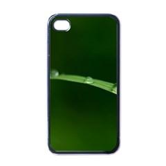Pearls   Apple iPhone 4 Case (Black)