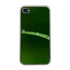 Pearls   Apple iPhone 4 Case (Clear)