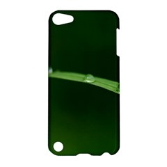 Pearls   Apple Ipod Touch 5 Hardshell Case