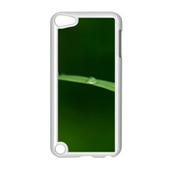 Pearls   Apple Ipod Touch 5 Case (white)