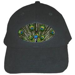 Peacock Black Baseball Cap