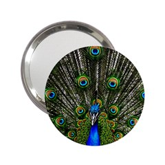 Peacock Handbag Mirror (2.25 )