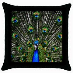 Peacock Black Throw Pillow Case