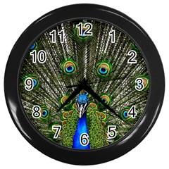Peacock Wall Clock (black)