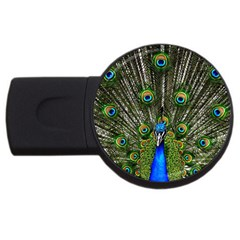 Peacock 1GB USB Flash Drive (Round)