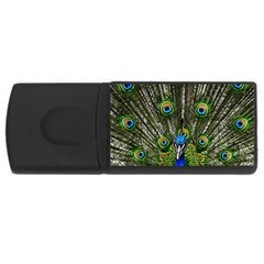 Peacock 2GB USB Flash Drive (Rectangle)