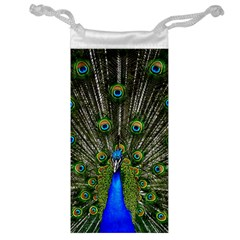 Peacock Jewelry Bag