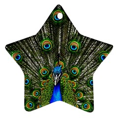 Peacock Star Ornament (two Sides)