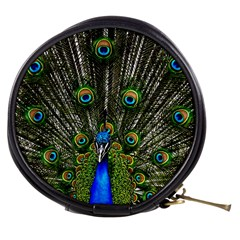 Peacock Mini Makeup Case