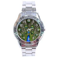 Peacock Stainless Steel Watch (Men s)