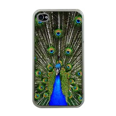 Peacock Apple Iphone 4 Case (clear)