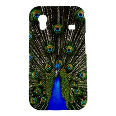 Peacock Samsung Galaxy Ace S5830 Hardshell Case