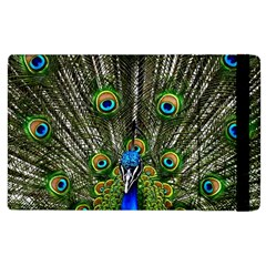 Peacock Apple iPad 2 Flip Case